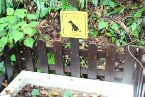 Dog latrine