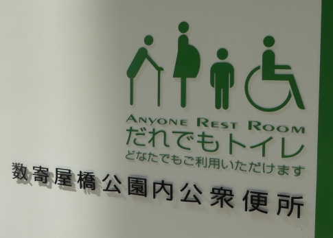 On the disabled toilet (Tokyo)