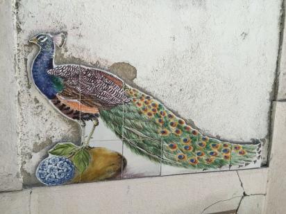 tile-peacock